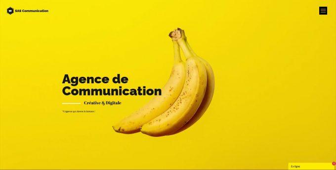 SAS Communication
