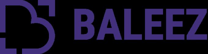 Baleez – Prestataire de conception de site web
